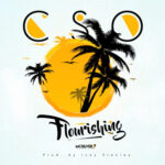 flourishing-cso