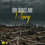 dry bones are rising chris shalom