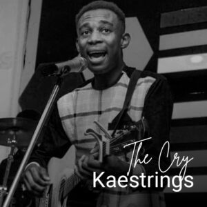 the-cry-kaestrings